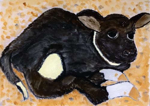 「かわいい産まれたての子牛」